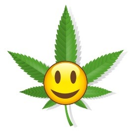 Did you know that marijuana can affect your blood sugars? Read more about it here!